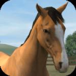 Os Melhores jogos de cavalos grátis para usuários Android de todas as idades