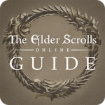 Confira os melhores guias de jogos online como The Elder Scrolls e Destiny
