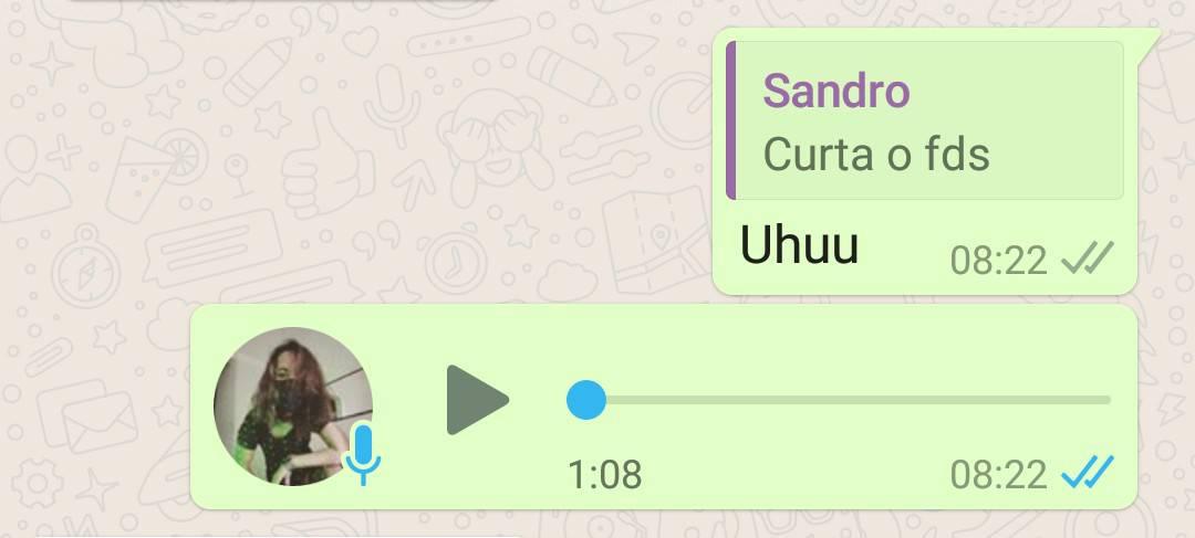 imagem 2 de WhatsApp saiba se a mensagem foi lida, mesmo com a confirmação desativada