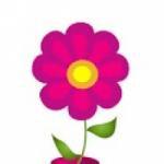 image 2 2017년 세계 여성의 날에 추천하는 여성 전용 앱