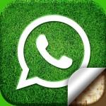 Cum se schimbă imaginea de fundal la WhatsApp