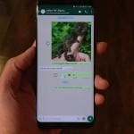 Cum să ascunzi imaginile Whatsapp din Galeria Foto pe Android