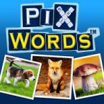 Imagine de la Cele mai bune jocuri ale lunii Octombrie : Shadow Fight 2, PixWords™