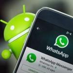 Cách khôi phục lại hình ảnh và video lỡ xóa khỏi ứng dụng WhatsApp trên Android