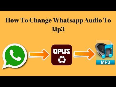 Zo kun je WhatsApp-audio naar MP3 converteren