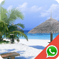 Beach Wallpapers for Chat