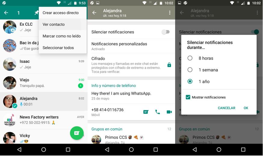 Imagen 2 - Cómo personalizar las notificaciones de WhatsApp en Android