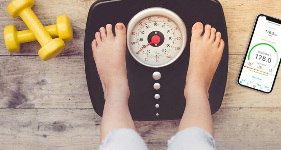 Best Weight Loss Apps to Reach Your Goals