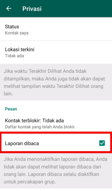 image of Cara Menyembunyikan Status Online di WhatsApp
