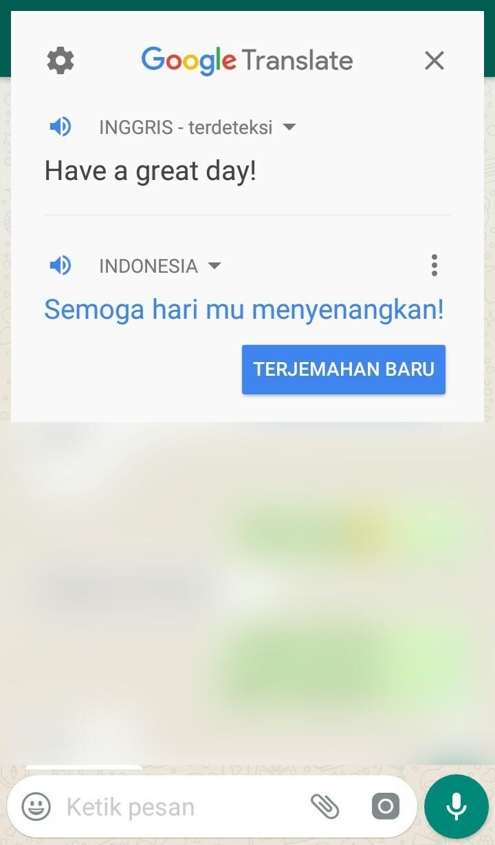 Image 3 Menerjemahkan Obrolan WhatsApp atau Facebook Secara Langsung