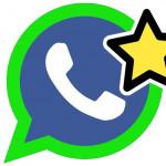Image 4 Cara Mencegah Kehilangan Pesan Penting di WhatsApp