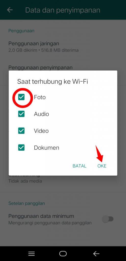 Image 5 Menghentikan Unduh Gambar Otomatis di WhatsApp