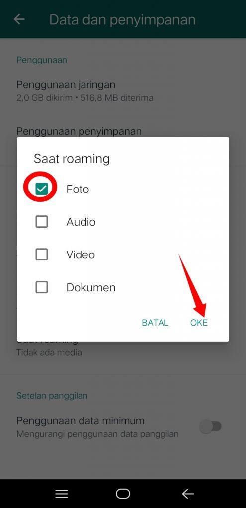 Image 7 Menghentikan Unduh Gambar Otomatis di WhatsApp