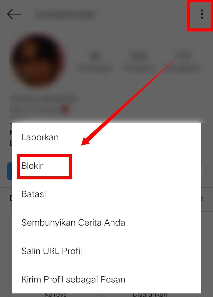 Image 4 Menyembunyikan Media Sosial Anda dari Perundung di Android
