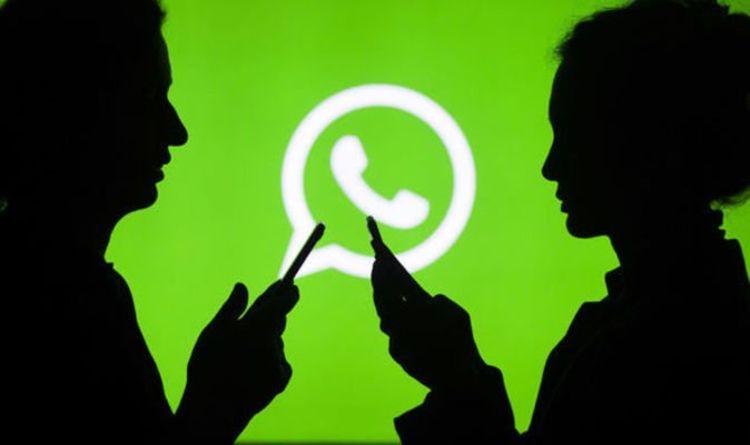 Image 1 Tak Ada Lagi Spam: WhatsApp Mengeluarkan Hapus Otomatis untuk Obrolan Grup