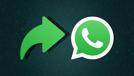 Image 2 WhatsApp: Fitur Kontrol Baru untuk Pesan Diteruskan