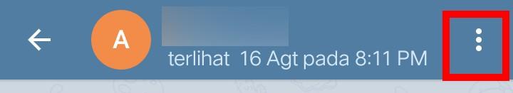 Image 3 Telegram Kini Mendukung Panggilan Video di Android