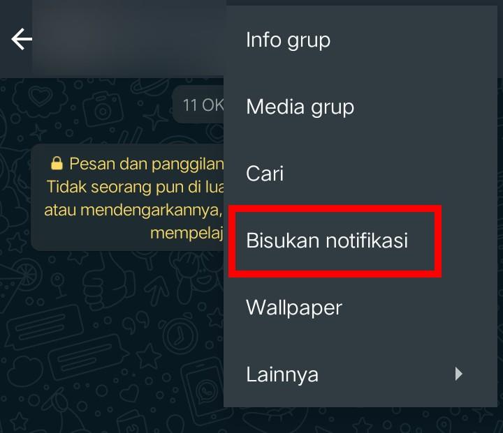 Image 3 Update WhatsApp: Sekarang Anda bisa Membisukan Kontak atau Grup Selamanya