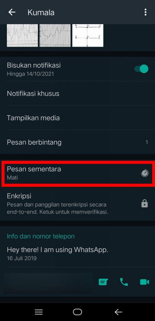 Image 4 Cara Mengaktifkan Pesan Sementara di WhatsApp