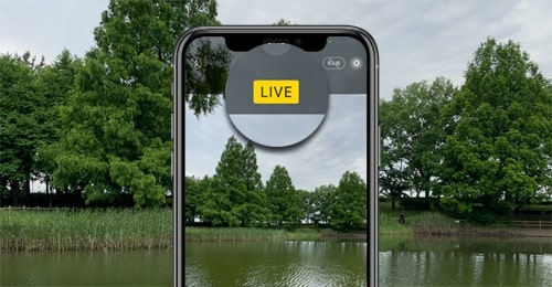 Cara Mengambil Gambar seperti Live Photos iPhone di Android