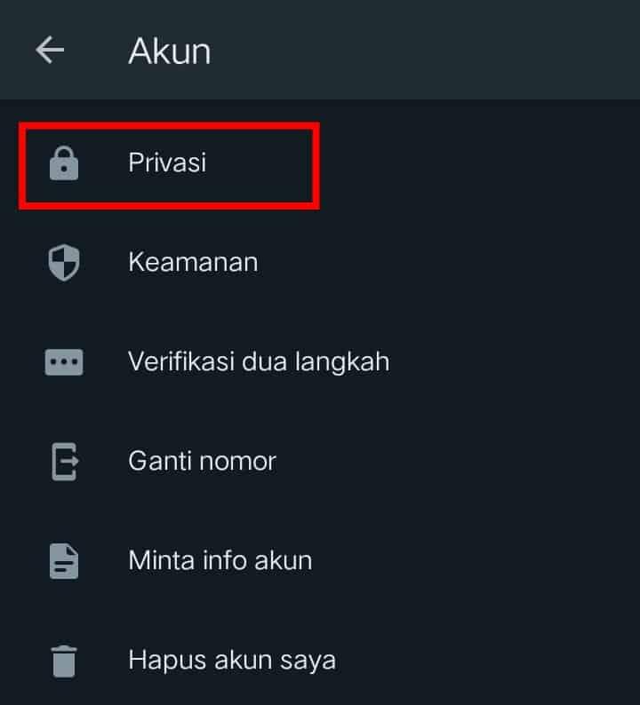 Image 3 Cara Menyembunyikan Terakhir Dilihat WhatsApp dari Orang Tertentu