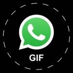 Comment créer et envoyer des GIFs sur WhatsApp