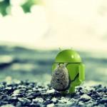 Les meilleurs fonds d'écran pour décorer votre Android
