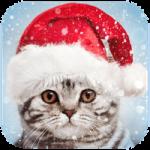 image de Fêtes de Noël : 5 applications gratuites pour Android en attendant Noël