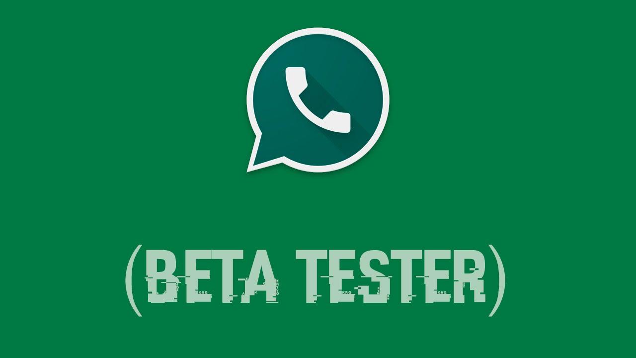 image de WhatsApp APK : Devenez testeur bêta ou téléchargez une version plus ancienne de WhatsApp