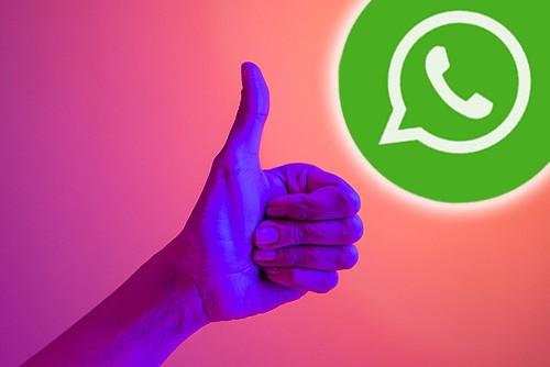 Comment activer le flash pour les notifications WhatsApp sur Android