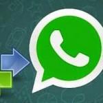 Comment transférer vos conversations WhatsApp vers un nouvel appareil Android ?