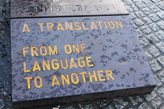 Immagine1 traduzioni