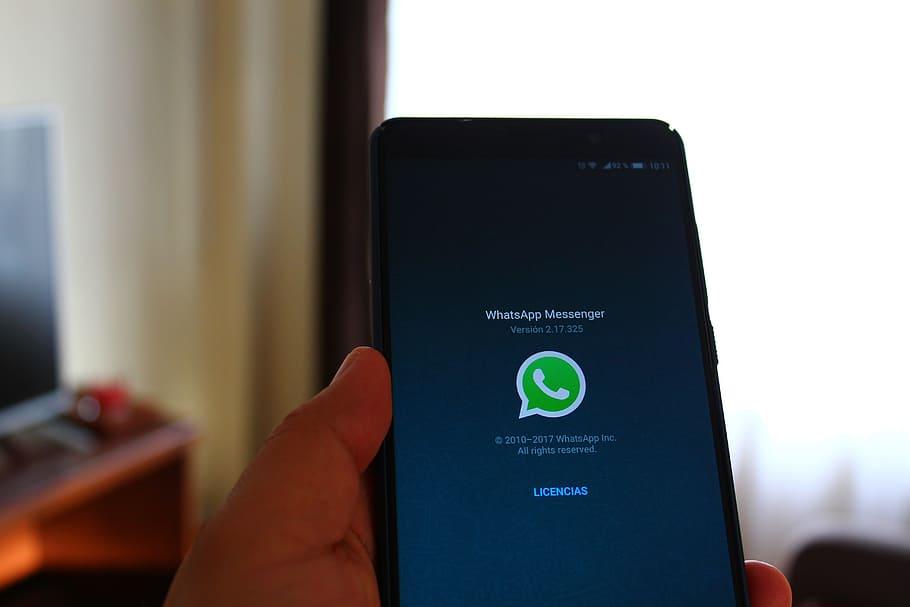 Come vedere e scaricare tutte le informazioni del tuo account WhatsApp su Android!