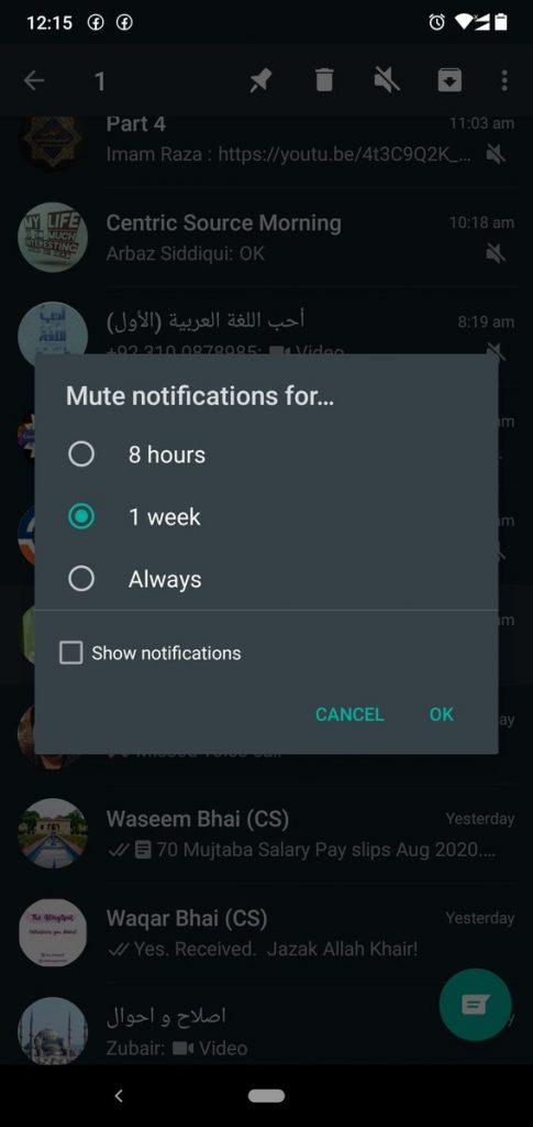 Stummschaltung Whatsapp