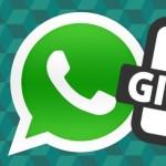 Görseller - WhatsApp Android Kullanıcıları İçin GIF Paylaşma Özelliğini Getirdiğini Duyurdu!
