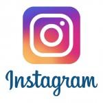 Photo Grid, InShot Gibi En İyi Instagram Hikaye Düzenleme Uygulamaları