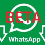 WhatsApp-test-kullanıcısı