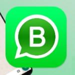 whatsapp-business-nedir