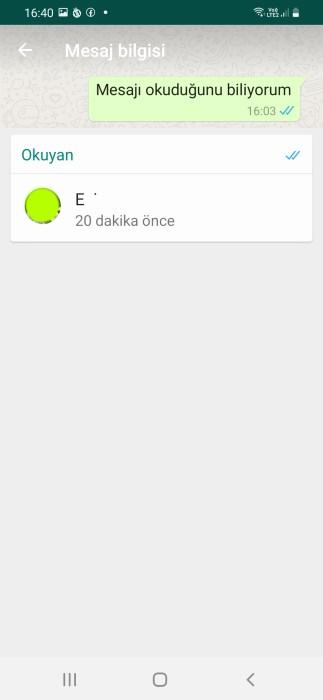whatsapp-mavi-tik-kapalıyken-okundu-bilgisi