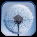 image of Android Telefon ve Tablet Ekranınızı Canlandıracak En İyi 5 Ücretsiz Canlı Duvar Kâğıdı!