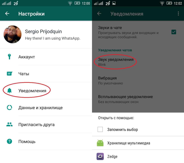 Картинка 1 Как настроить уведомления в WhatsApp
