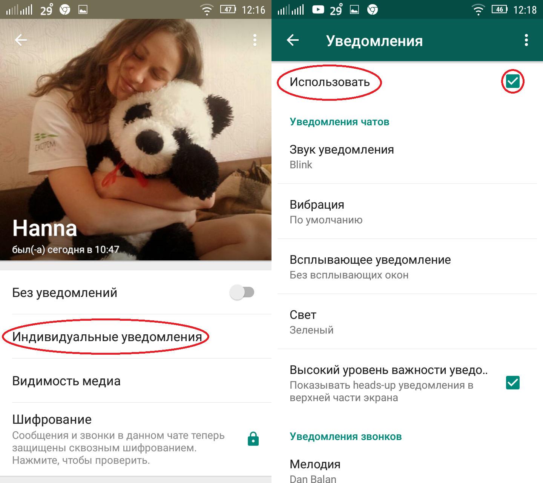 Картинка 3 Как настроить уведомления в WhatsApp
