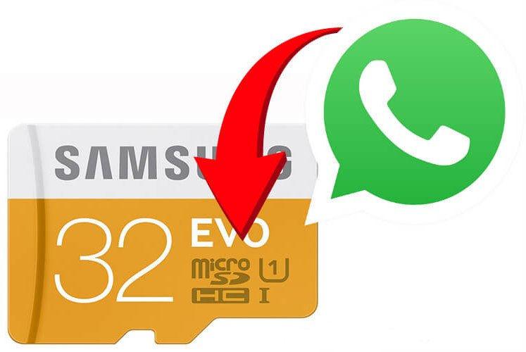 Катика 5 Как контролировать занимаемое файлами WhatsApp место в смартфоне Android