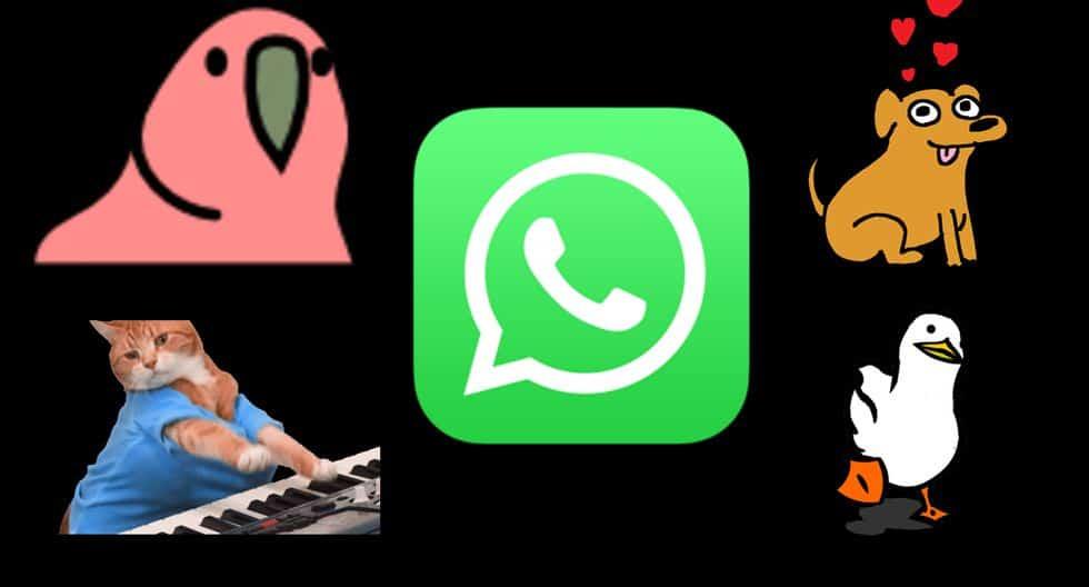 Как создавать анимированные стикеры со звуком для WhatsApp